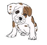 java script puppy